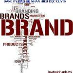 Tư vấn đăng ký nhãn hiệu hàng hóa